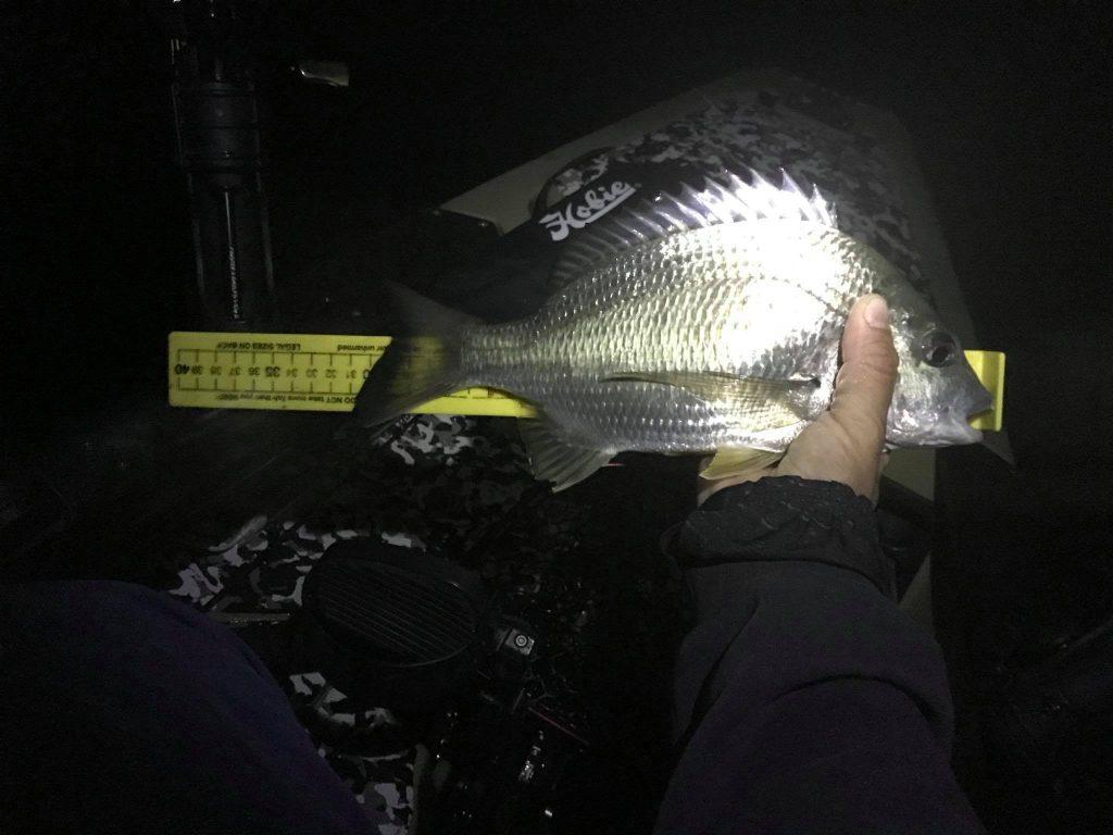 Bream Fishing