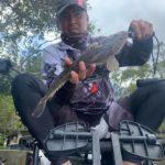 Sanctuary Cove Fishing Gold Coast September 2020
